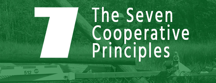 7 Cooperative Principles for Credit Unions - What Are They?