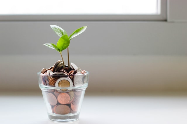 5 Tips on How to Maximize Your Money While Still Young
